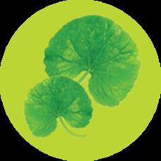 Yoosun rau má an toàn lành tính