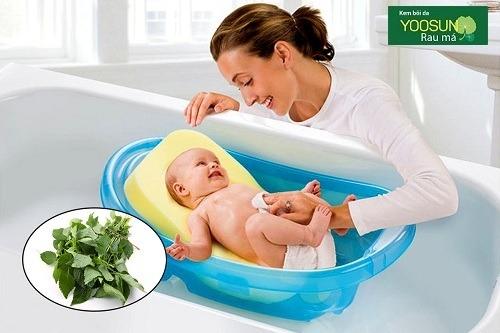 Mẹo chữa chàm sữa ở trẻ sơ sinh bằng lá kinh giới