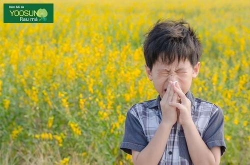 Bệnh dị ứng phấn hoa là gì