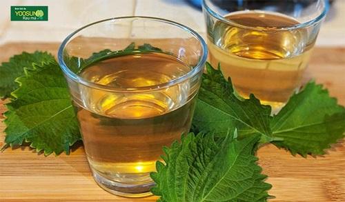 Cách uống nước lá tía tô trị mụn thâm